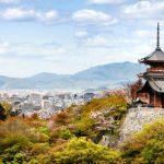 【痩身エステランキングin京都】効果や口コミといった情報から厳選したTOP10最新版